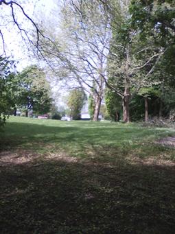 Bild: Naturparknahe Landschaft zeichnet das Wartbergbad aus