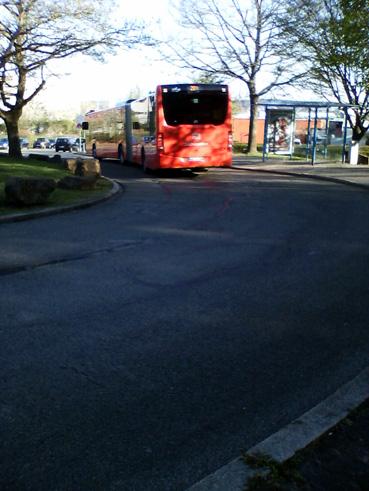 Bild: Kostenloses Busfahren auch bei uns?