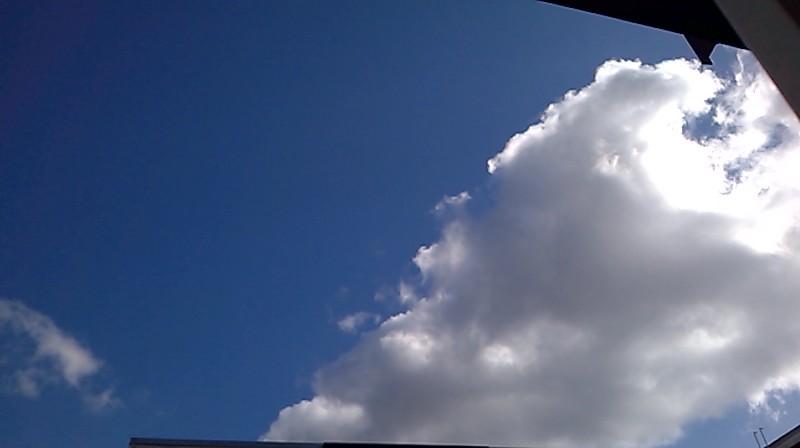 Bild: Cumuluswolken in unserer Region (Systembild RN)