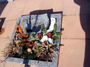 Bild: Grab von Ludwig Göring in  Ittersbach