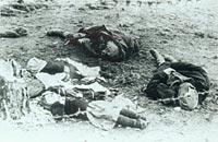 Bild: Soldaten sind M�rder ...