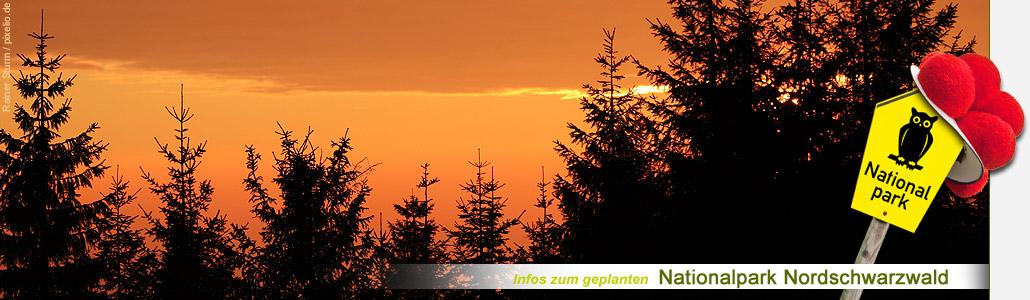 Bild: Die Abendsonne �ber dem neuen Nationalpark..
