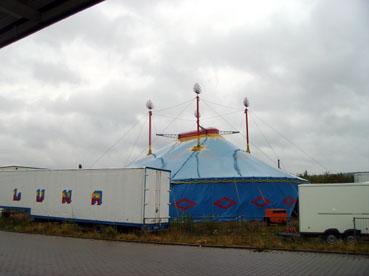 Bild: Tierqu�lerei im Zirkus?